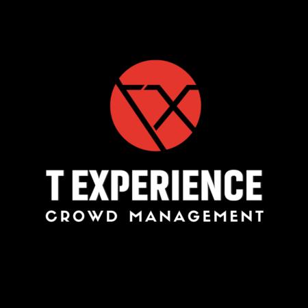 t_experience_logo